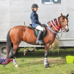 Showjumping success for Kimberley