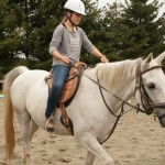 Foley turns riding school horse