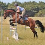 Omen's progeny show jumping aptitude