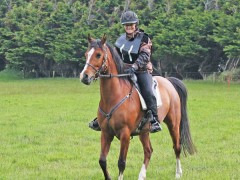 Successful completions at latest endurance ride