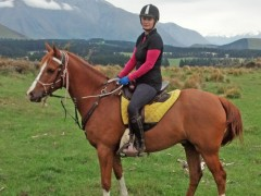 Kool Kat on track for first endurance ride