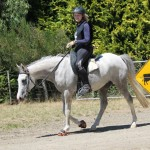 Mares represent Aurora at Mt Linton's Jeff Farm ride