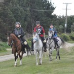 Trio of 80km completions for endurance team